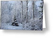 A Morning Dusting Greeting Card