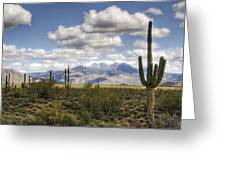 A Morning In The Desert  Greeting Card