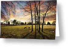 A New Day Begins Greeting Card