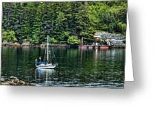 A Nice Day For A Sail Greeting Card