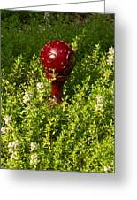 A Orb In Thyme Greeting Card