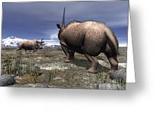 A Pair Of Male Elasmotherium Confront Greeting Card