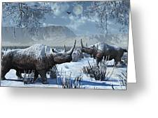 A Pair Of Woolly Rhinoceros In A Severe Greeting Card