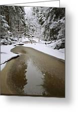 A Partially Frozen Stream Runs Greeting Card