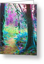 A Path Along A River Greeting Card