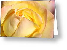 A Peace Of Beauty Greeting Card