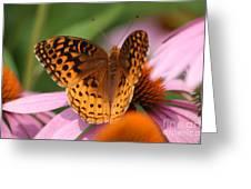 A Pretty Flying Flower Greeting Card