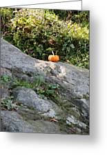 A Pumpkin In Central Park Greeting Card