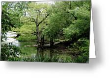 A River Runs Through Central Park  Greeting Card
