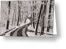 A Road Running Through Snow-covered Greeting Card