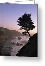 A Scenic View Of The Oregon Coast Greeting Card