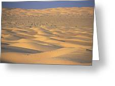 A Sea Of Dunes In The Sahara Desert Greeting Card by Stephen Sharnoff