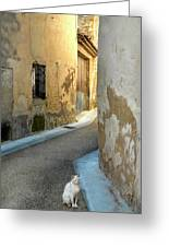 A Sidestreet In Provence Greeting Card