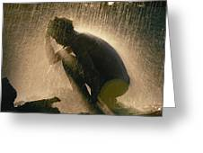 A Silhouetted Man Cooling Off In Water Greeting Card