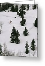 A Skier Makes His Way Down A Hill Greeting Card