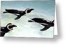 A Small Squadron Of Swimming Penguins Greeting Card
