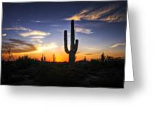 A Sonoran Sunset  Greeting Card