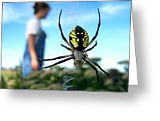 A Spider Beside Her Greeting Card