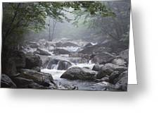 A Stream Courses Through An Greeting Card
