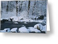 A Stream Running Through Snowy Woodland Greeting Card