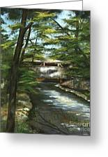 A Summer Walk Along The Creek  Greeting Card