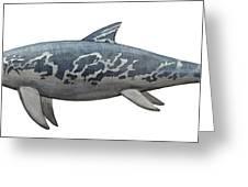 A Temnodontosaurus Burgundiae Greeting Card