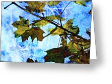 A Time For Change Greeting Card