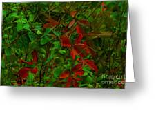 A Touch Of Christmas In Nature Greeting Card