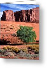 A Touch Of Green At Monument Valley Greeting Card