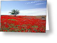 A Tree In A Red Sea Greeting Card