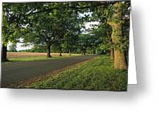 A Tree-lined Rural Virginia Road Greeting Card