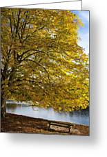 A Tree With Golden Leaves And A Park Greeting Card by John Short