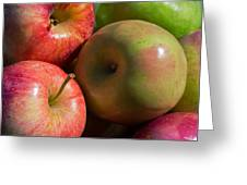 A Variety Of Apples Greeting Card