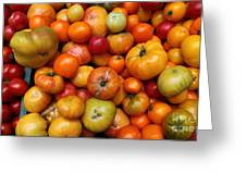 A Variety Of Fresh Tomatoes - 5d17812-long Greeting Card
