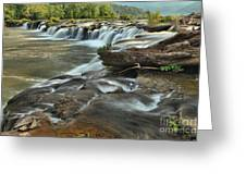 A View Across The New River Greeting Card