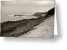A View Central California Coast Greeting Card