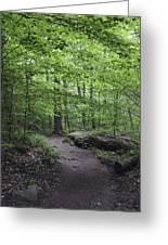 A Walk In The Catskills Greeting Card