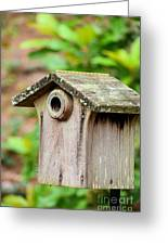 A Winter's Getaway For Birds Greeting Card