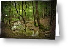 A Woodland Stream In Cades Cove No.472 Greeting Card