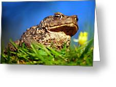 A Worm's Eye View Greeting Card