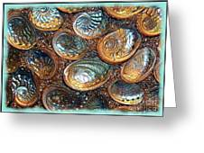 Abalones Greeting Card