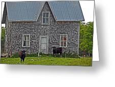 Abandoned Cow House - Barrow Bay Greeting Card