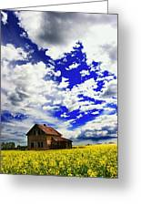 Abandoned Farmhouse In A Canola Field Greeting Card