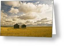 Abandoned Grain Bins With Hail Damaged Greeting Card