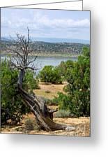 Abiquiu Lake New Mexico 2 Greeting Card