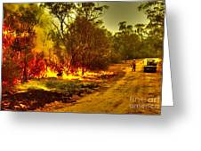 Ablaze Greeting Card by Joanne Kocwin