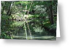Abrams Reflections Greeting Card