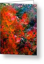 Abstract 269 Greeting Card