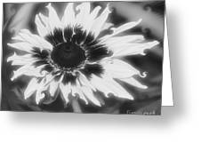 Abstract Daisy Greeting Card