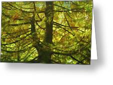 Abstract Foliage Greeting Card